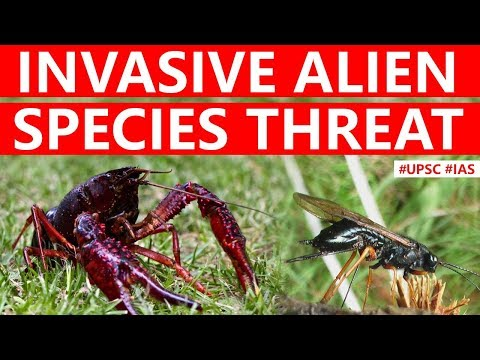 Invasive Alien Species, Why India is vulnerable to attacks by alien species? Current Affairs 2019