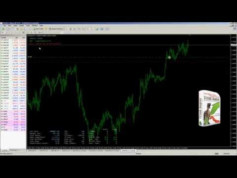 Forex advisor Trend Raptor, video example of trading.