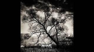 Atmospheric black metal 2019