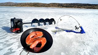 CATCH And COOK While Ice Fishing!!! (SO DELICIOUS)