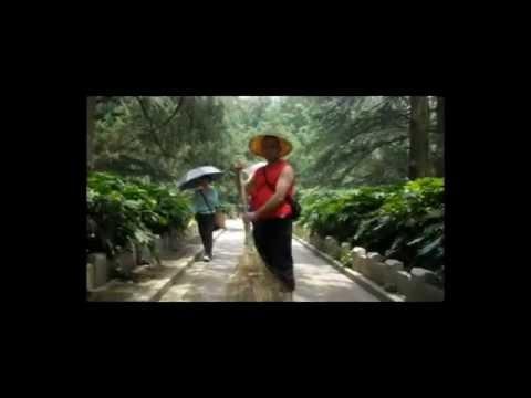 Viaje 2008, Hanzhou, Shanghai y más