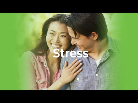 New Image International - Smoothie: Stress