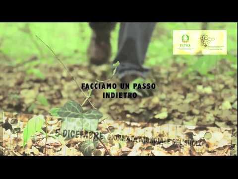 Stop al consumo di suolo in Italia
