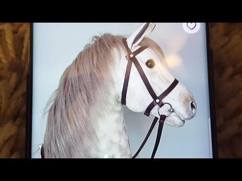 I get a hobbyhorse/Ich bekomme ein HOBBYHORSE