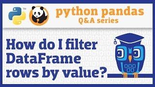 How do I filter rows of a pandas DataFrame by column value?