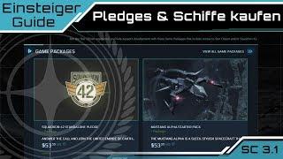 Star Citizen 3.1 Einsteiger Guide - Pledges, Game Packages & Schiffskäufe    [Deutsch/German]