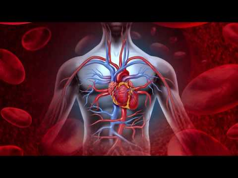 Marwa ohanyan hipertenzija