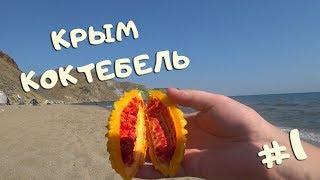 Крым , Коктебель, Тихая бухта, Хамелеон. #1