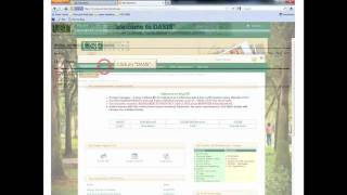USF OASIS Tutorial for Transfer Students