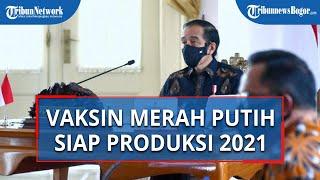 Vaksin Covid-19 Merah Putih Buatan Indonesia Dikatakan Jokowi Siap Produksi di Pertengahan 2021
