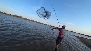 Рыбалка в березовке одесской области на 10 дней