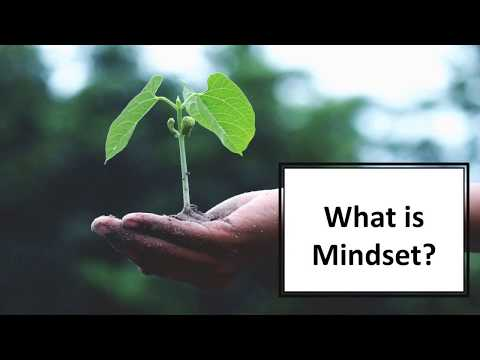 Video 2 - What is Mindset | Growth Mindset Course - YouTube