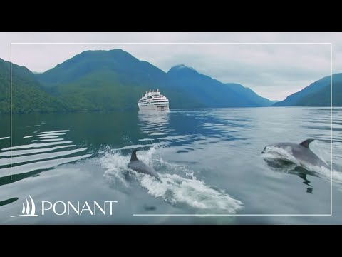 The pleasure of sailing in New Zealand - Beyond the Seas by PONANT