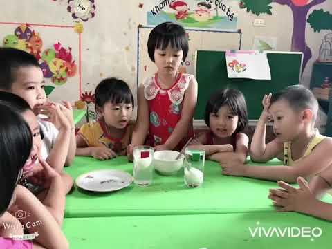 """Lớp 4 tuổi A làm thí nghiệm"""" trứng chìm trứng nổi"""""""
