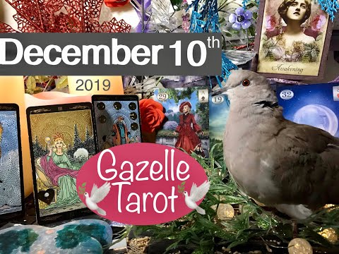 December 10 2019 Daily Tarot Reading 💝 Gifts From The Heart 🎁 #tarot #tarotreading #tarotreader