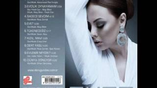 "Ebru Gündes - HArika ALbum 2008 ""EVET"""