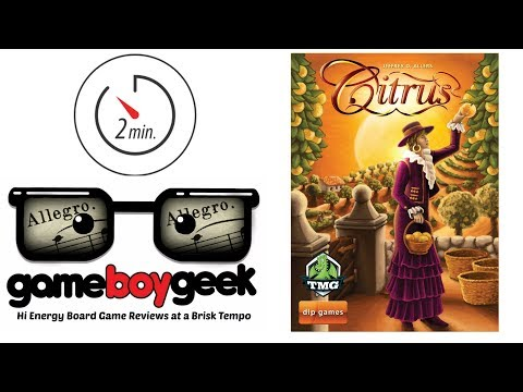The Game Boy Geek's Allegro (2-min Review) of Citrus