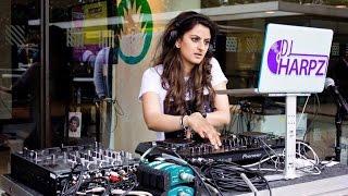DJ Harpz TV   Episode 4   The Alchemy Festival