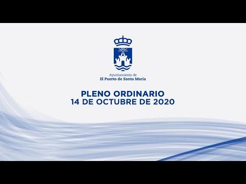 Pleno ordinario del mes de octubre