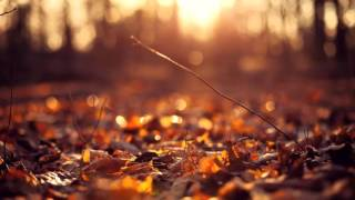 Nujabes  Voice Of Autumn (Extended)