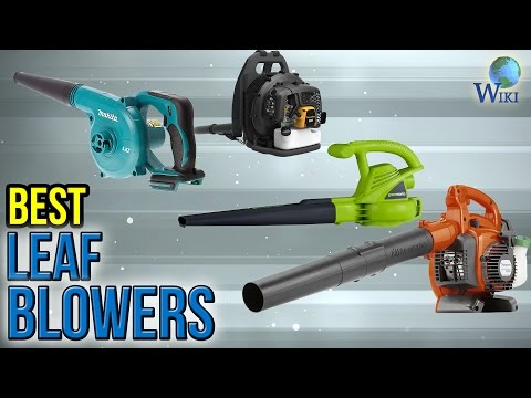 10 Best Leaf Blowers 2017