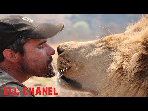 ადამიანი ლომი (ვიდეო)