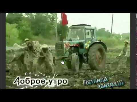 Ленинград - Путина,конечно, жалко! (ВВП)