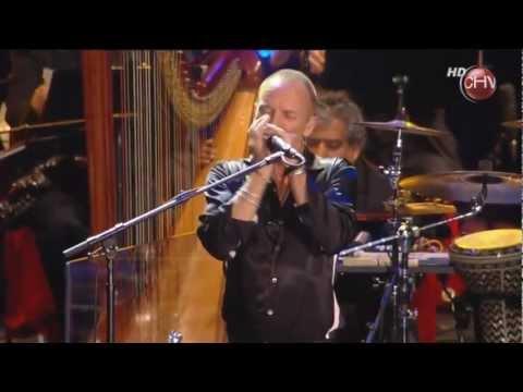Sting - Fields of Gold (HD) Live in Viña del mar 2011