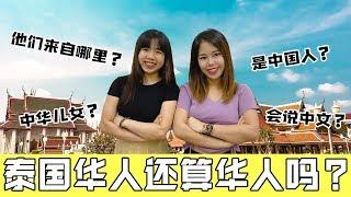 10分钟看懂泰国华人,当年是否发生过排华!为何泰国华人不像新马华人那样会说华语?【政经10分钟 EP50】