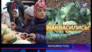 Новгородцы поквасили на «Капустках» в «Витославлицах»