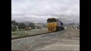 DXR 8007 (NZ)