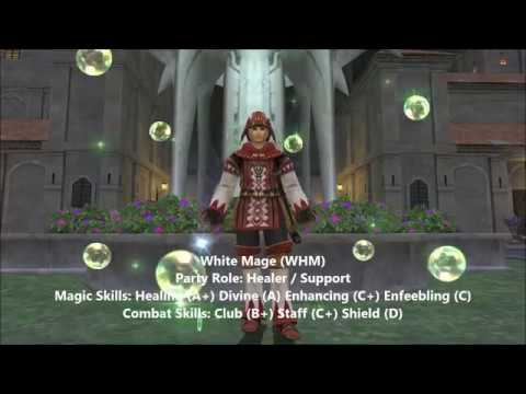 On Healing Hands - A Comprehensive WHM Guide (V2) - Final
