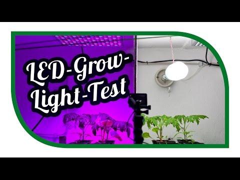 LED Grow Light Test ☀️ Aussaat Jungpflanzenanzucht Zeitraffer ☀️ Pflanzenlicht ☀️ Pflanzenlampen