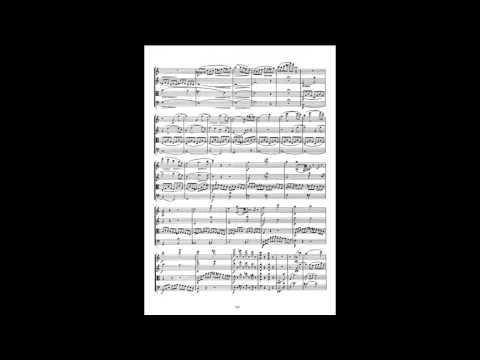 "Schubert: Quartet in A minor, D. 804, ""Rosamunde"" _ Allegro ma non troppo (1/4)   As the first violin"
