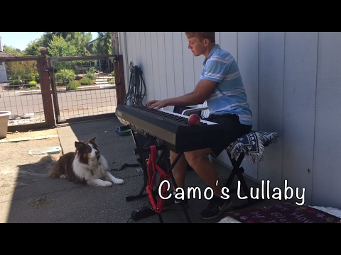 A lullaby written for my beloved dog! 🐶 Composition I find is a great way to express yourself!