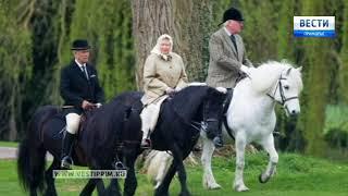 Открытый турнир по конному спорту завершился в приморской столице