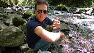Путешествия дальнобойщика по водопадам штата Орегон.