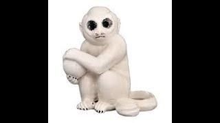 """Warren Zevon's """"Porcelain Monkey"""": An Unofficial Fan Slideshow"""