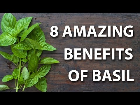 Video 8 Health Benefits of Basil