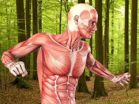 Verzögerungen und Schmerzen im unteren Rücken