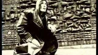 Aardvarks - Homeless