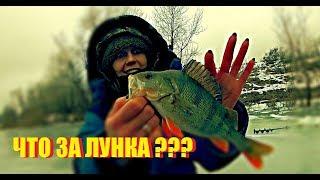 ЧТО ЗА ЛУНКА??? Таня жжет. Зимняя рыбалка 2019. Семейная рыбалка.