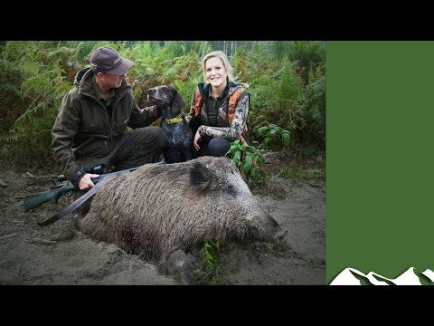 Boar Hunting in the Sologne