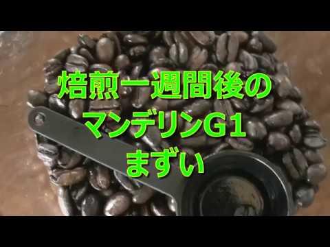 コーヒーVLOG まずいマンデリンG1は焙煎失敗か?