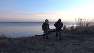 Ловля сазана на веселовском водохранилище