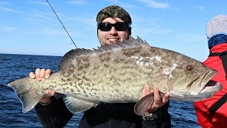 Catch and Cook - GROUPER CONTEST - GRILLED, SEARED and SALT BLOCK!