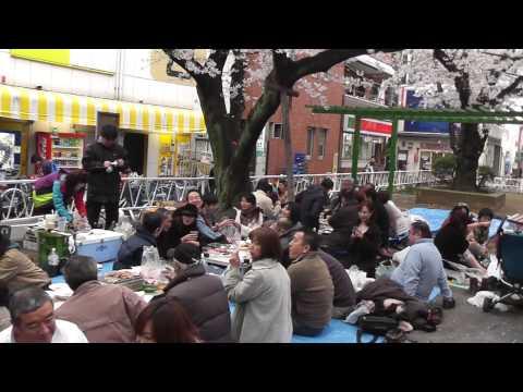都立大学・呑み川緑道での花見宴会(2010年4月)