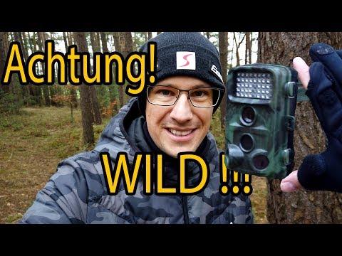 Wildkamera Fotofalle 📸 Was muss ich beachten   meine Tipps!
