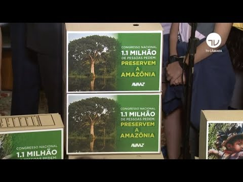 Câmara recebe abaixo-assinado contra desmatamento ilegal da Amazônia - 21/08/19