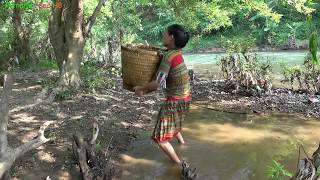 Survival skills - Primitive skills Catching Big Catfish by Hand - catch catfish by the stream
